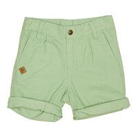 London Chinos Shorts - Green Pear/0284
