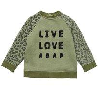 Gladstone Sweatshirt - Green