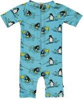 Svømmedragt Med Korte Ben Surf Pingvin - BLUE-701