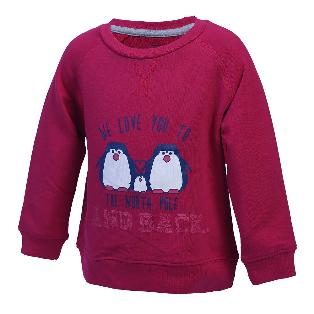 Image of   Color Kids Karlton Sweatshirt Med Print Mini - 443 Rasber