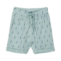 Shorts - Green Ice