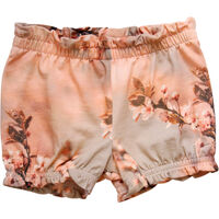 Shorts - Hummingbird Print