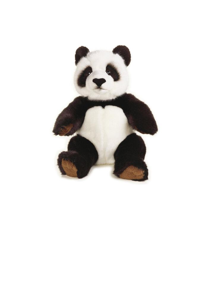 National Geographic Panda Bjørn thumbnail