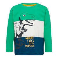 Lwterrence 650 T-Shirt - 866 Green