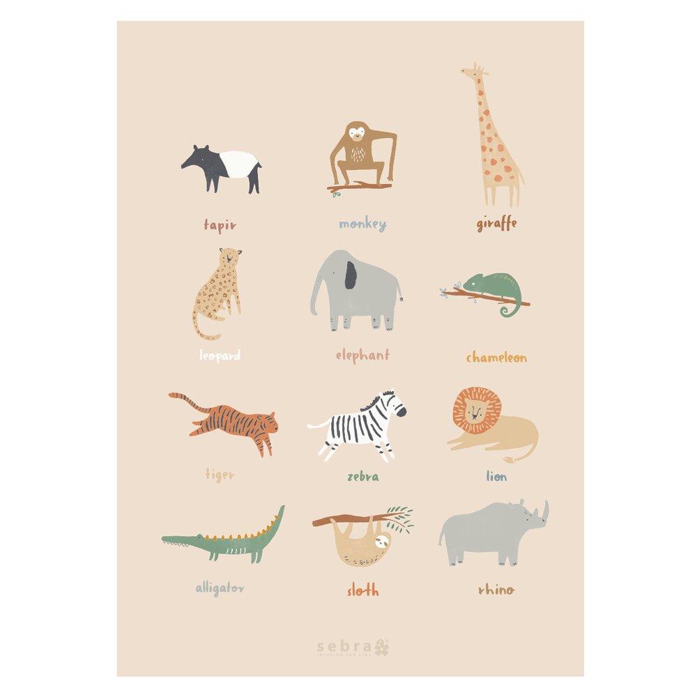 Sebra Plakat, Wildlife thumbnail