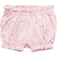 Dazel Shorts - 013280301