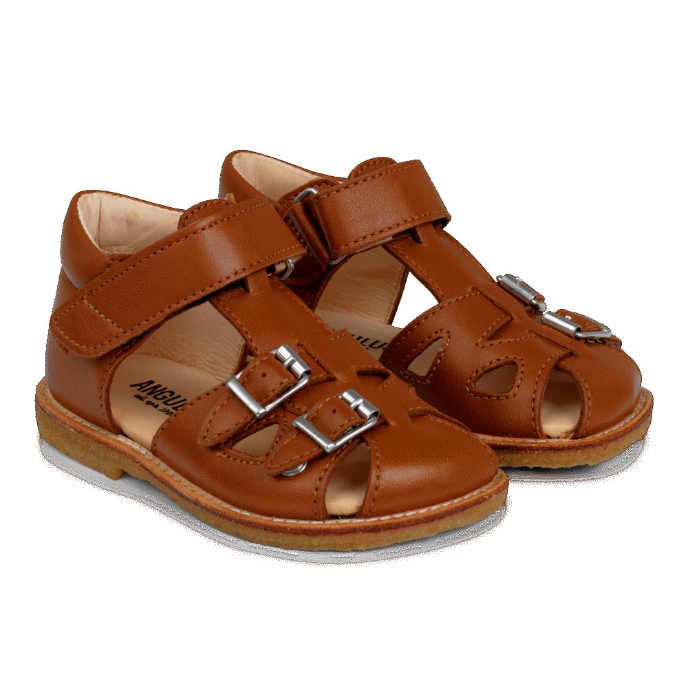 Image of Angulus Begynder Sandal Med Velcro Og Spænder - 1431 (9ca1534d-ac90-4166-8895-21275f3edf3a)