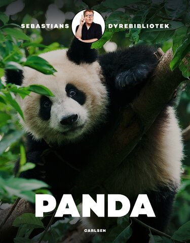 Sebastians dyrebibliotek - Panda