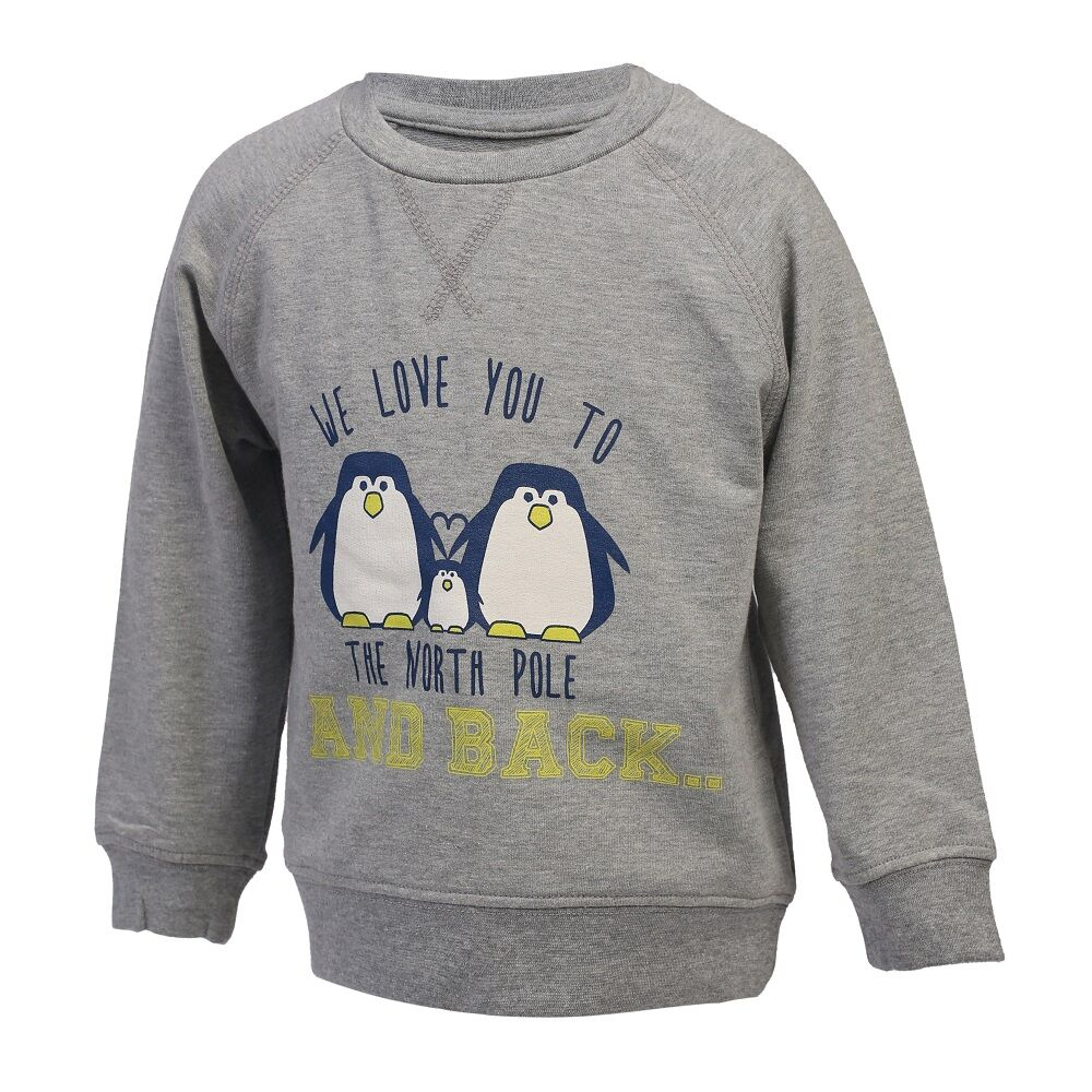 Image of   Color Kids Karlton Sweatshirt Med Print Mini - 101 Grå