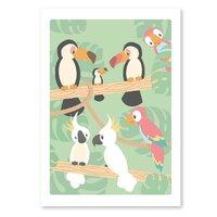 St.Circus Plakat - Fugle I Regnskov