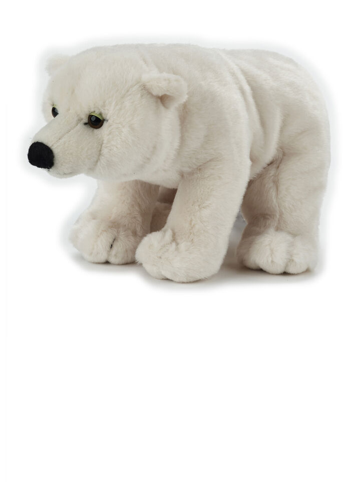 Image of National Geographic Polar Bjørn (780daaae-8a6a-483e-9af9-7298e1d4ae77)
