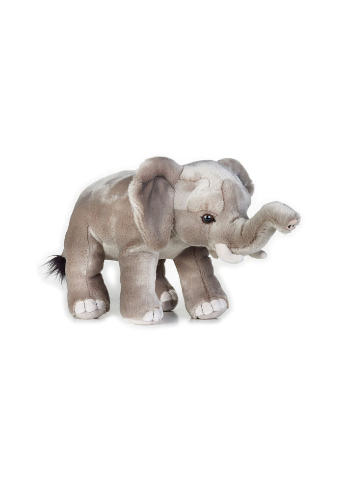 Image of National Geographic Afrikansk Elefant (3f03e11b-d0e0-4e39-9f79-f21204a0ec57)