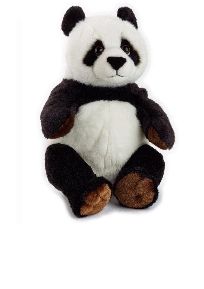 Image of National Geographic Panda (9062f62e-4f9c-47fd-a3c9-251ce0923905)