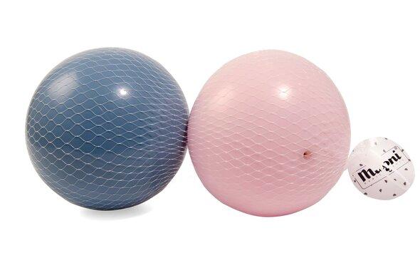 2 Plastikbolde i net (lyserød og blå )