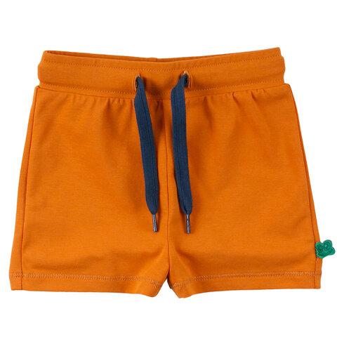 Alfa Shorts - 017104601