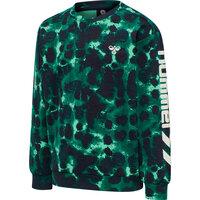 Drake sweatshirt - 9991