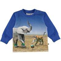 Molo Eloy T-Shirt - 7440