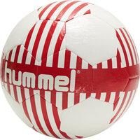 Danmark fan 2020 fodbold - 3681