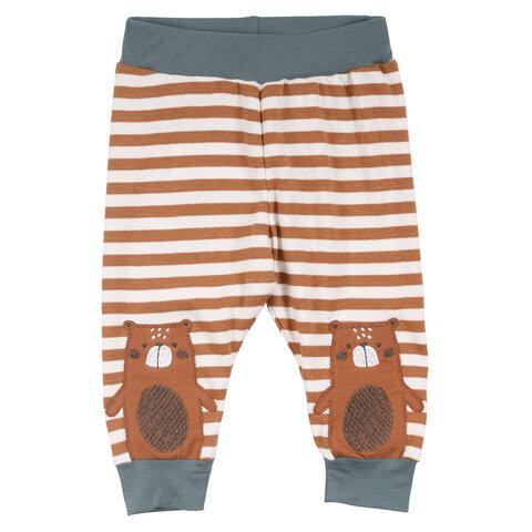 Bear stribet bukser - 017114201