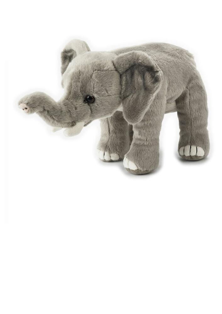 Image of National Geographic Elefant (22ce337a-b9b7-4929-9681-e0c3df282ed5)