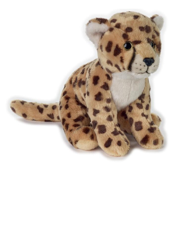 Image of National Geographic Gepard (851b615e-669b-4993-9666-670e1ba35401)