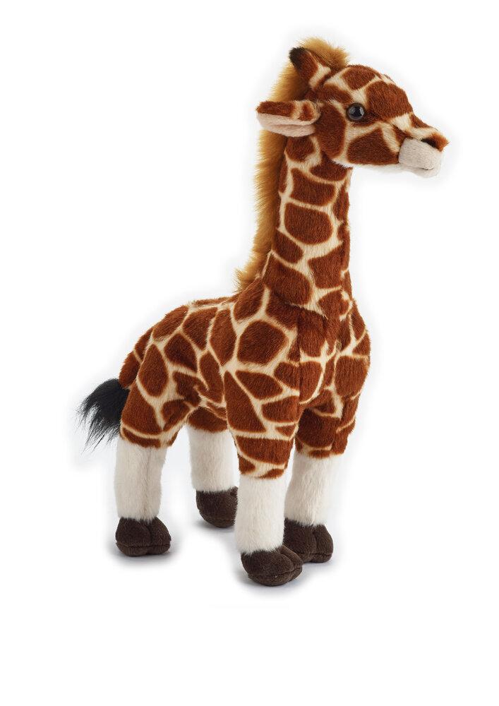 Image of National Geographic Giraf (6db1e0d3-e09b-45ef-b726-d2ed1283bb10)