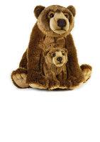 Grizzlybjørn Med Baby