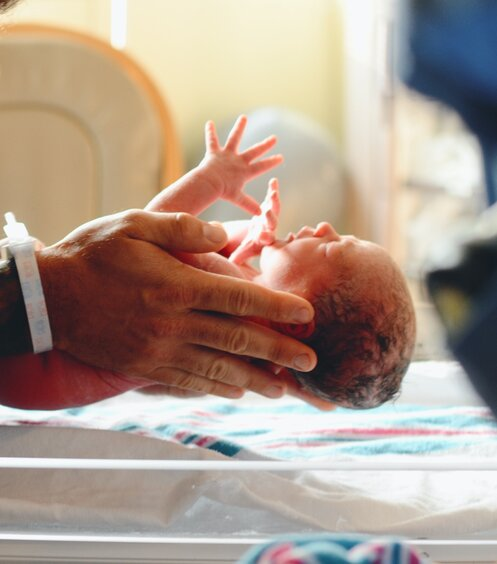 fødslens faser